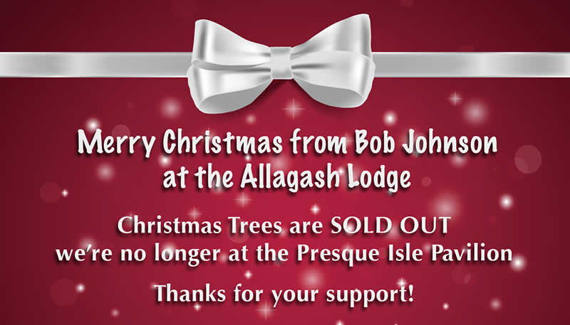 Christmas Trees are SOLD OUT
